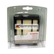 Картридж-фильтр AEF104 Hера пылесоса  Electrolux, AEG, Zanussi (Электролюкс, АЕГ, Занусси)